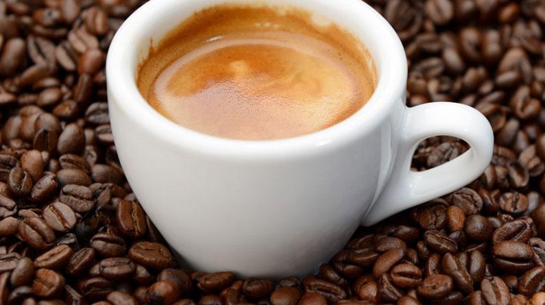 Coffee Roasting Millionaire